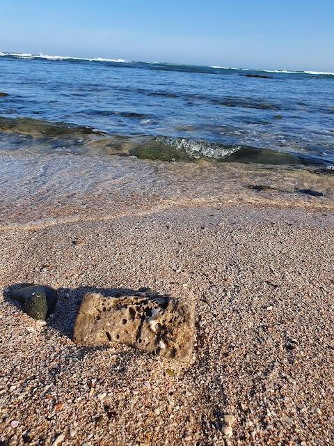 مقدمة البحر  sea front シーフロント