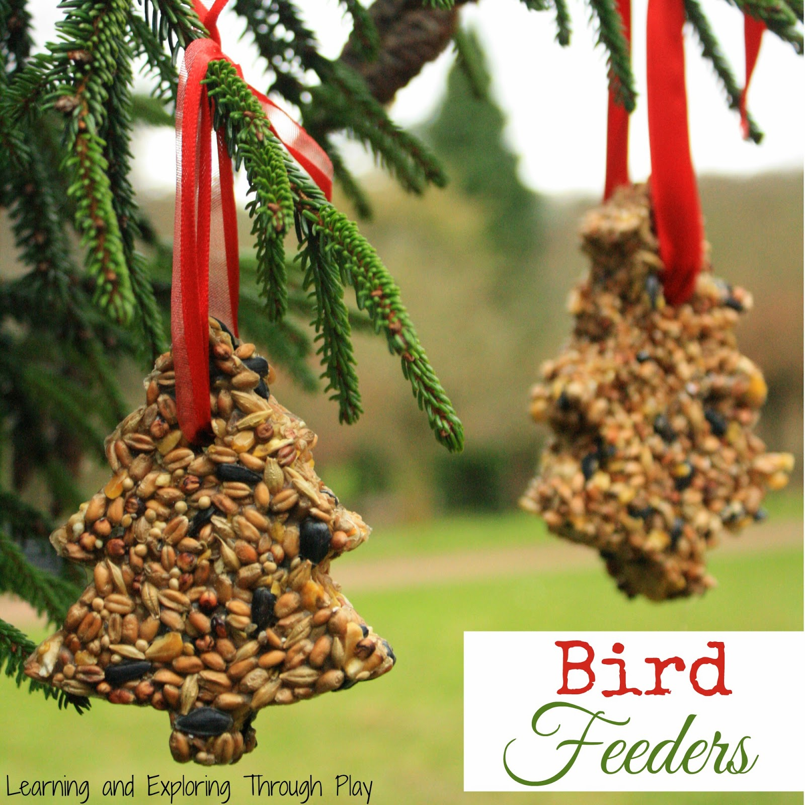 http://learningandexploringthroughplay.blogspot.co.uk/2014/12/homemade-bird-feeders.html
