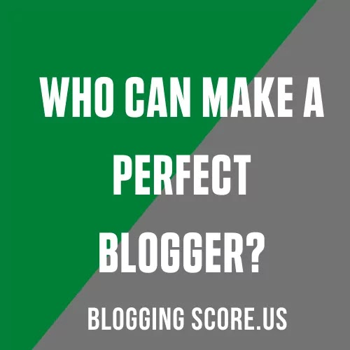 Who Can Make A Perfect Blogger?