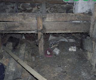 Dark Barn Escape