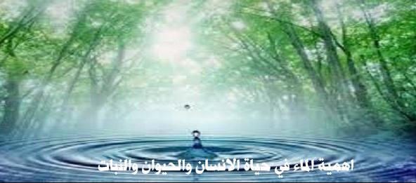 اهمية الماء في حياة الانسان والحيوان والنبات