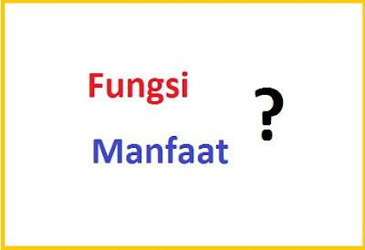 Perbedaan Kata FUNGSI dan MANFAAT