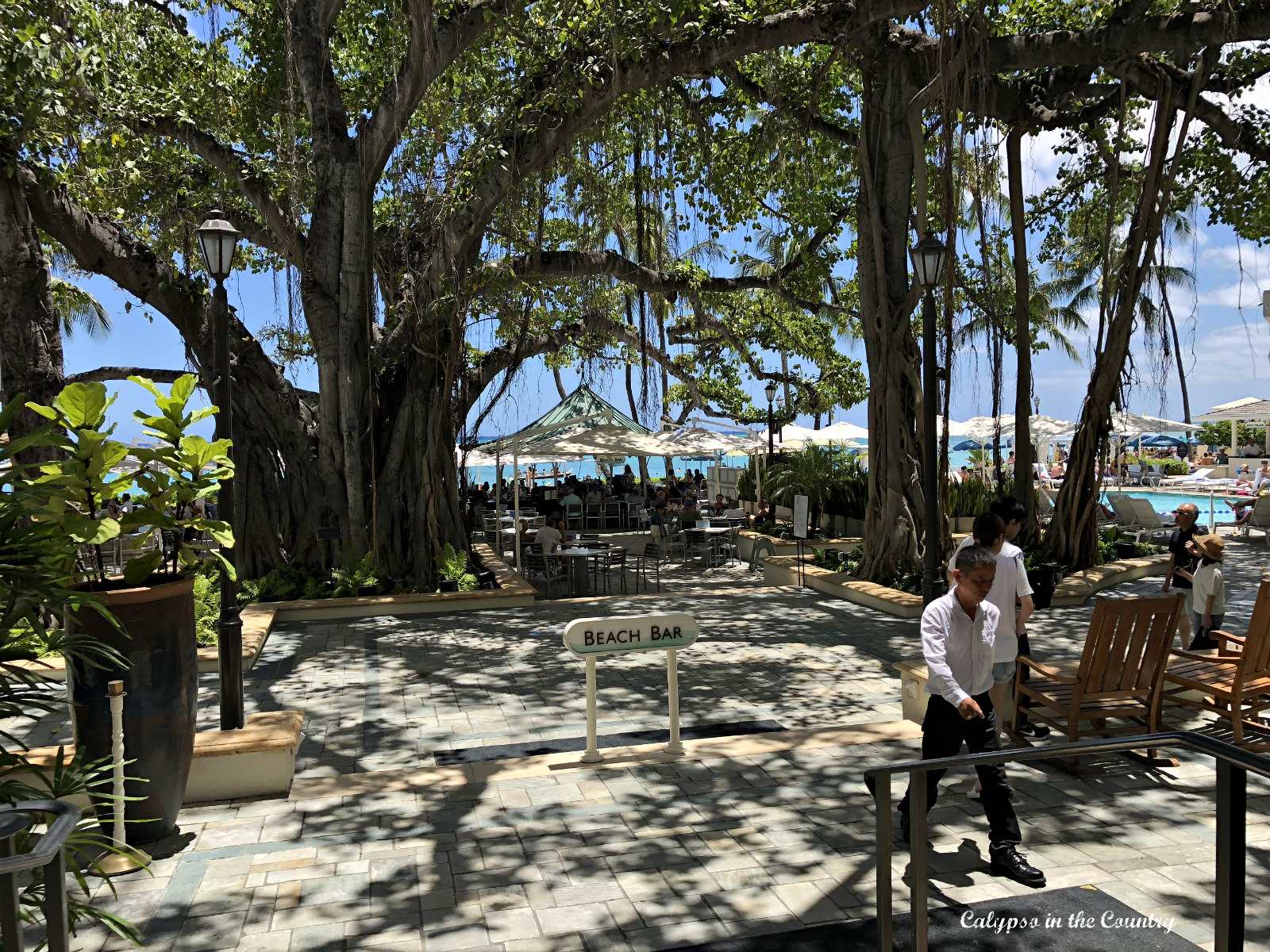 Beach Bar at the Moana Surfrider