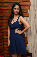 Radhika Mehrotra in a Deep neck Sleeveless Blue Dress at Mirchi Music Awards South 2017 ~  Exclusive Celebrities Galleries 045.jpg