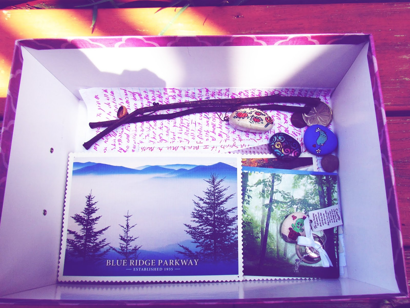 Nature Discovery Box For Manifestation and Wishes