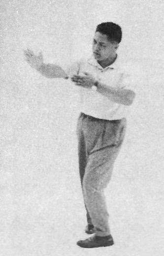 Tai Chi Chuan (Square Form) 3. The Seven Stars Style
