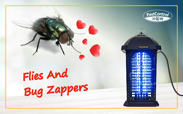 are-flies-attracted-to-bug-zappers
