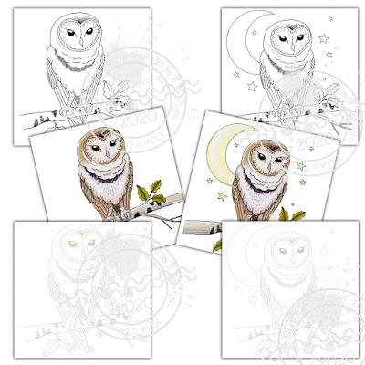https://www.etsy.com/uk/listing/772545378/owl-digistamp-and-precoloured-image-6?ref=shop_home_active_7