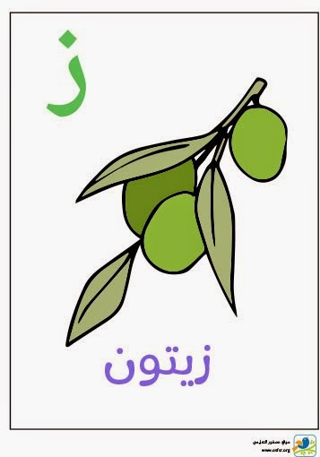 ملصق تعليمي للأطفال لتعليم حروف الهجاء (حرف الزاي)
