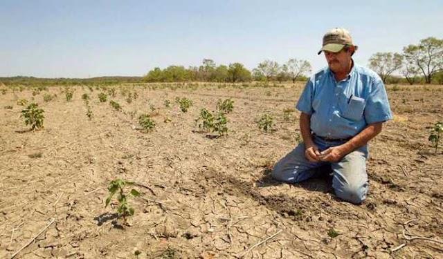 México reportó que el 80% del territorio atraviesa cierto grado de sequía