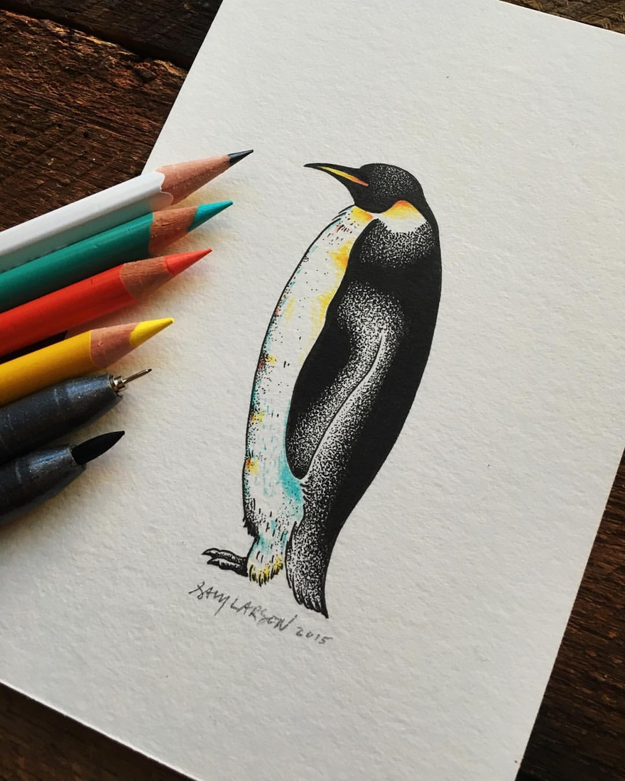 10-Emperor-Penguin-Sam-Larson-Injection-of-Inspiration-in-Diverse-Drawings-www-designstack-co
