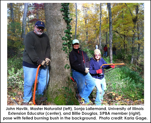 Volunteers restore woodland at Dixon Springs Agricultural Center
