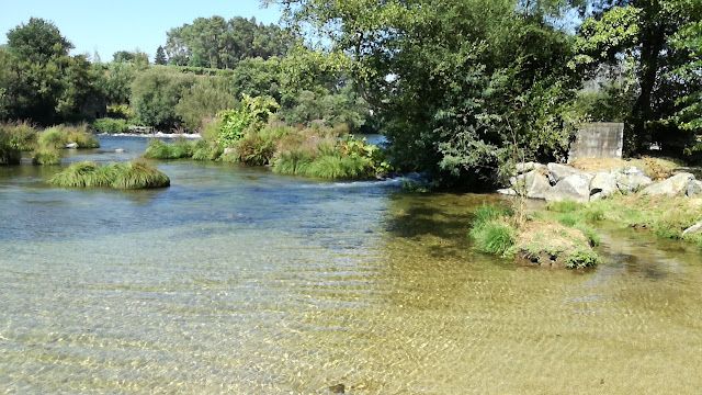 àguas Cristalinas do Rio Cávado em Navarra
