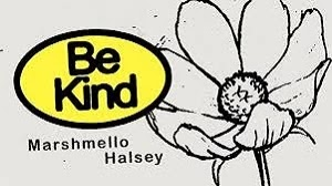 BE KIND LYRICS MARSHMELLO | HALSEY