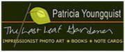 VISIT MY WEBSITE patriciayoungquist.com