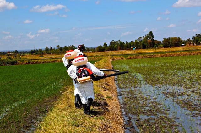 Zdjęcia pokazujące współcześnie rozpylanie DDT w Afryce