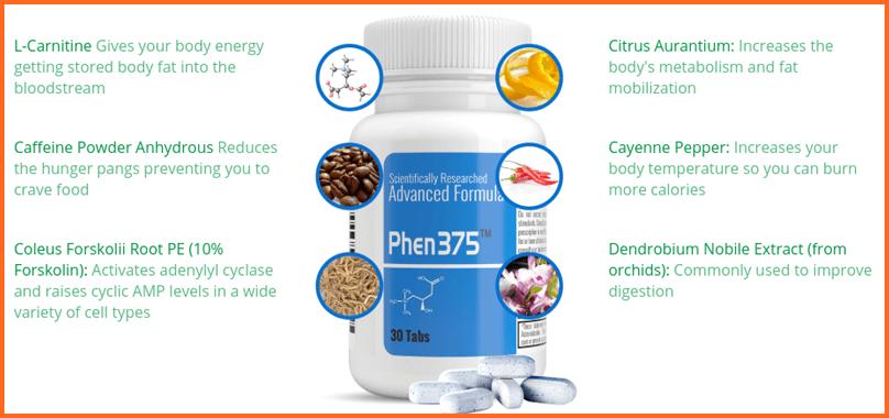phen375 active ingredients