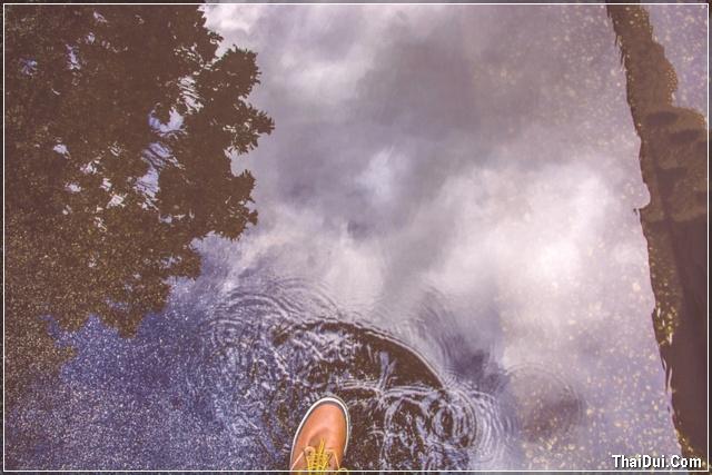 bước chân trong cơn mưa mùa thu
