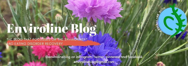 Enviroline blog logo