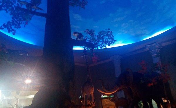 Ruangan Moseum Satwa