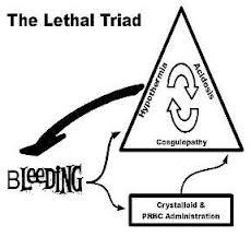 Ithaca DWI Lawyer Blog: Ithaca Cortland Lawyer New York's