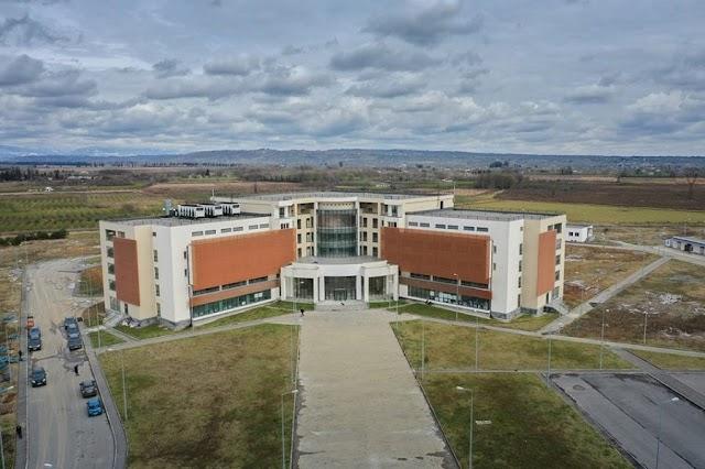Грузия готовится к расширению эпидемии коронавируса