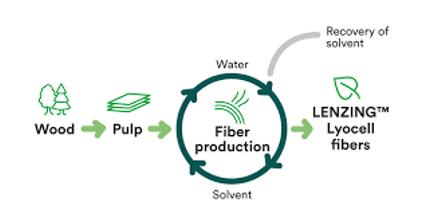 closed loop fibre production