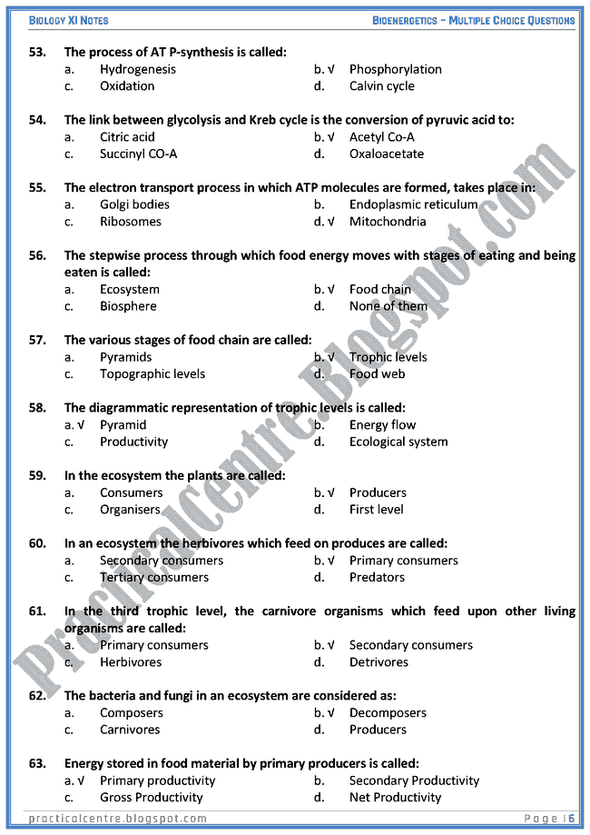 Bioenergetics - Multiple Choice Questions (MCQs) - Biology XI