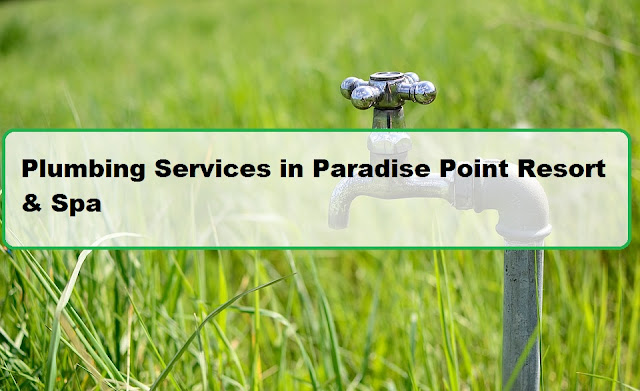 Plumbing Services in Paradise Point Resort & Spa
