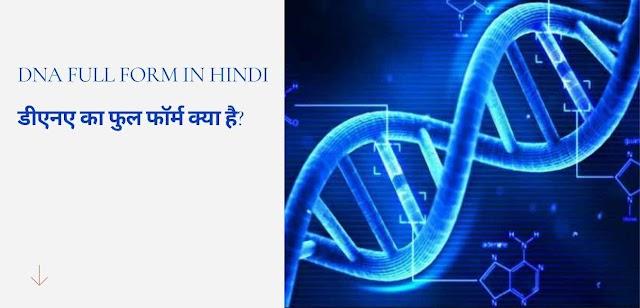 dna full form in hindi डीएनए का फुल फॉर्म क्या है?