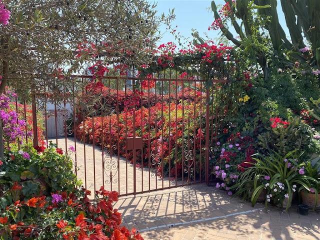 jardim com flores vermelhas, rosas e lilases.