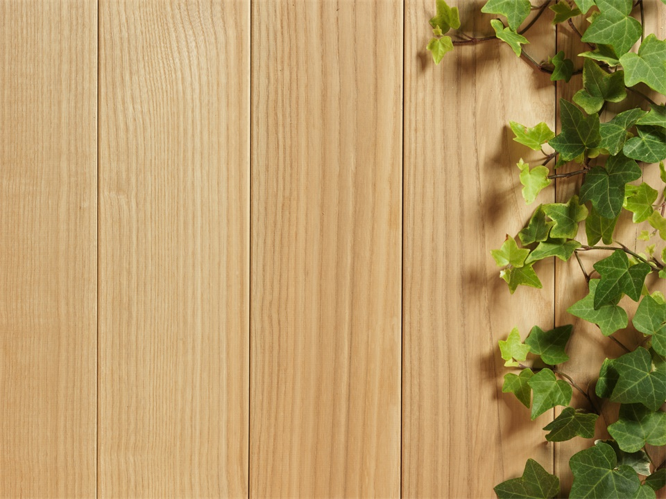 Ivy with woodgrain background picture