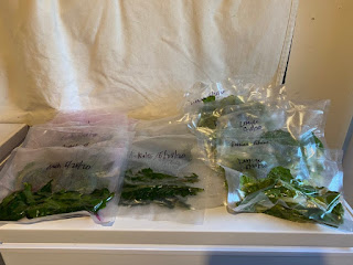 Greens to be Frozen