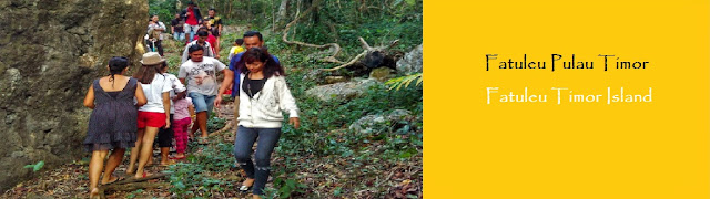 https://ketutrudi.blogspot.com/2018/10/fatuleu-timor-island-fantastic-jungle.html