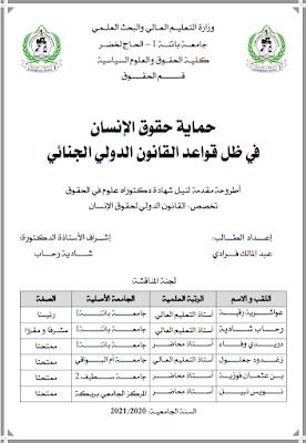 أطروحة دكتوراه: حماية حقوق الإنسان في ظل قواعد القانون الدولي الجنائي PDF