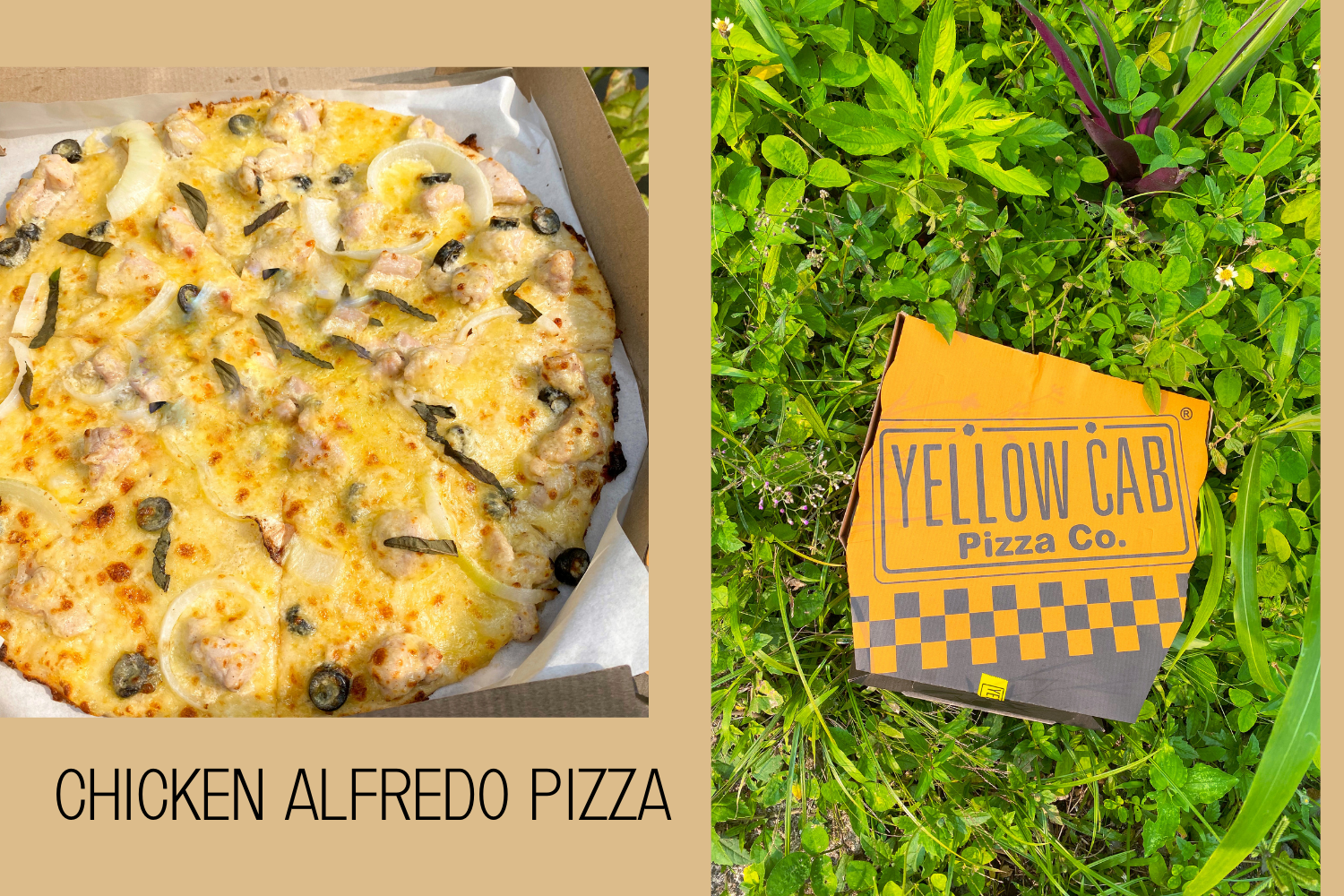 Yellow Cab Releases New Chicken Alfredo Pizza