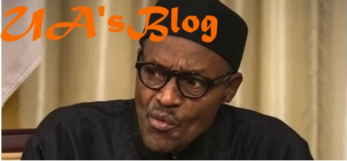How looters are using Benue killings, other issues to blackmail Buhari - Presidency warns
