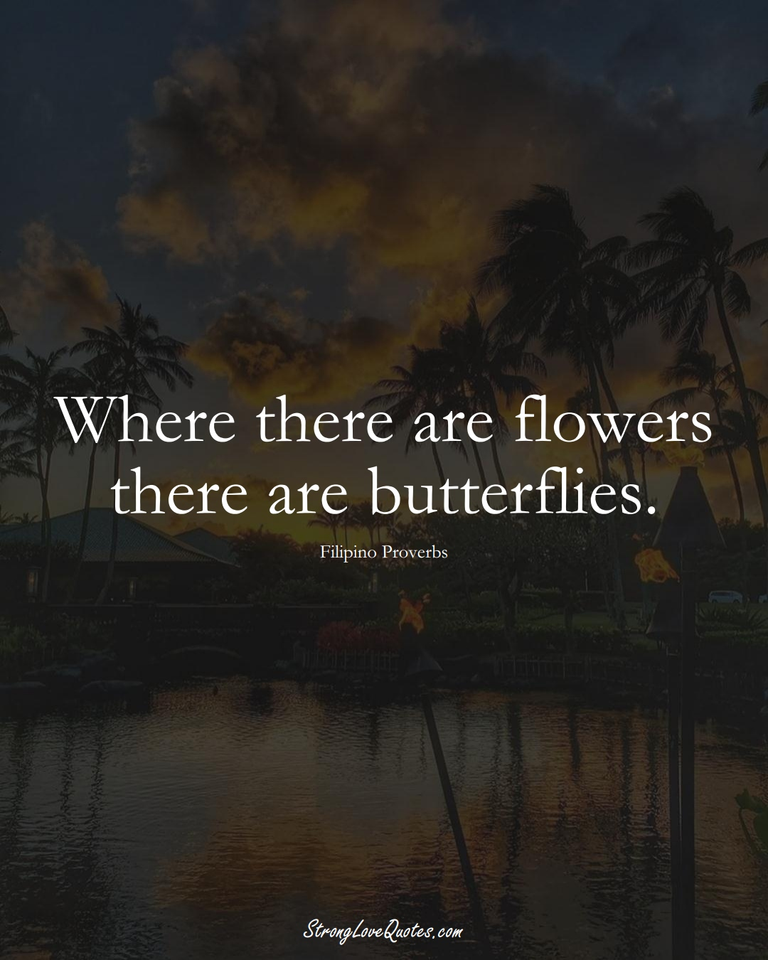 Where there are flowers there are butterflies. (Filipino Sayings);  #AsianSayings