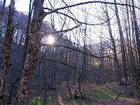 Утро на стоянке возле Ай-Петринской яйлы