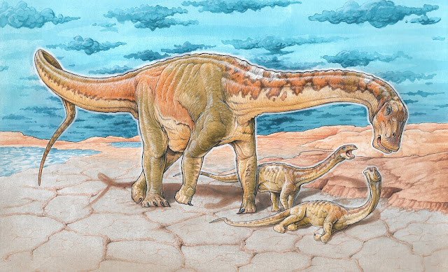 New species of dinosaur 110 million years old discovered in Argentina