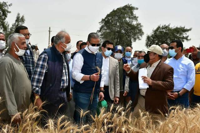 """محافظ الفيوم يتفقد حصاد """"القمح"""" بالناصرية ويوجه بتكثيف الندوات التوعوية لتشجيع المزارعين على نظم الري الحديث"""
