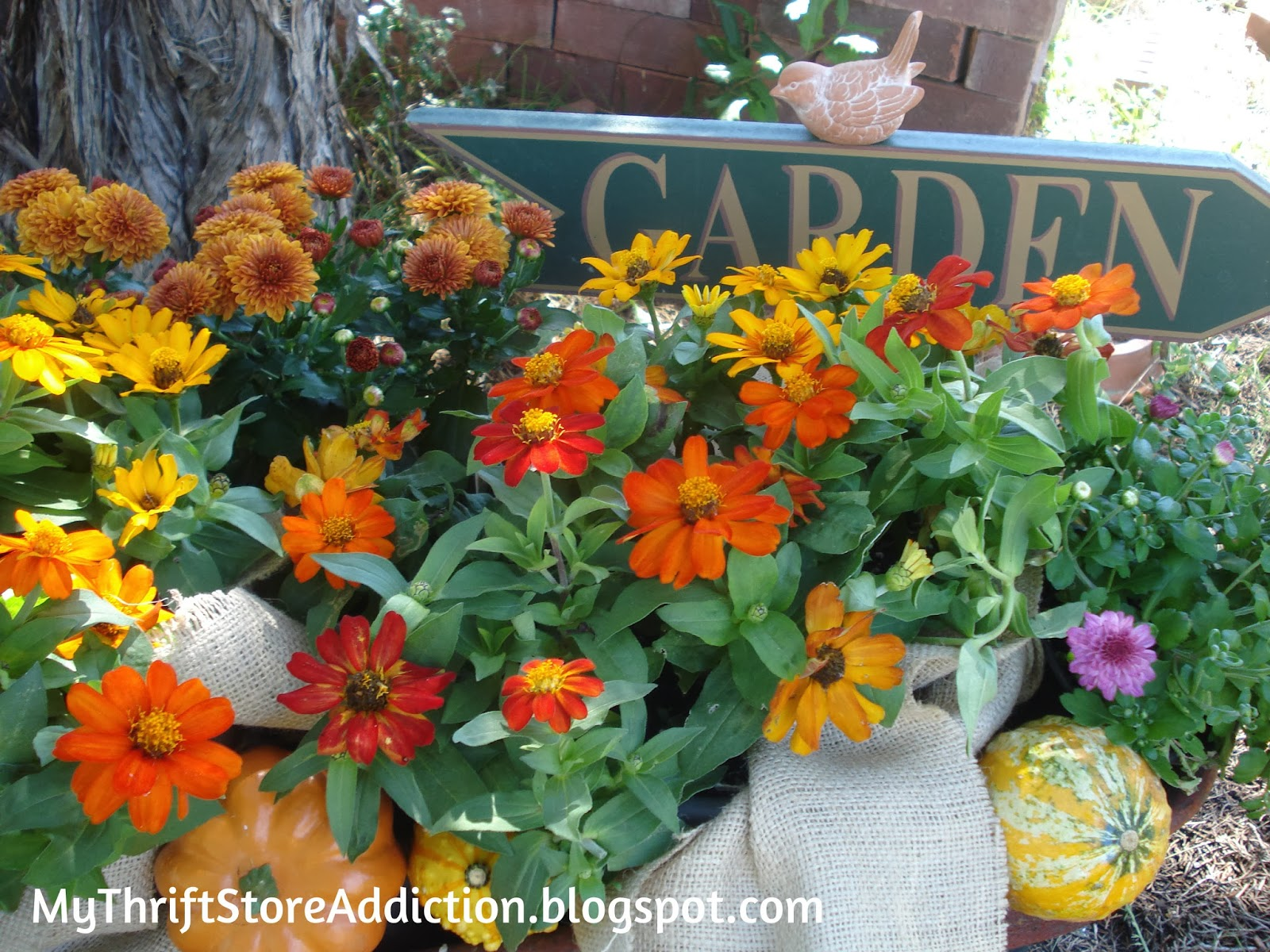 Little red wagon autumn garden