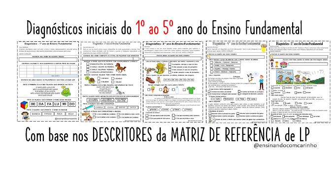 Modelos de diagnósticos para turmas do ensino fundamental de acordo com a matriz de referência de língua portuguesa