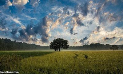الفرق بين الحلم والرؤيا,ما الفرق بين الحلم والرؤيا,الفرق بين الحلم والرؤية,الفرق بين الرؤية والحلم,عالم الاحلام والرؤى,تفسير الأحلام والرؤى في المنام