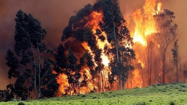 Τεράστιες πυρκαγιές στη Σιβηρία - Ο καπνός φτάνει στον Βόρειο Πόλο