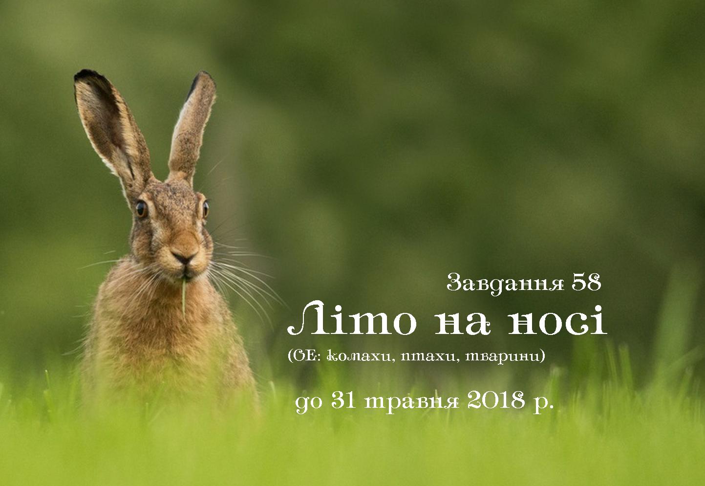 Завдання 58. Літо на носі