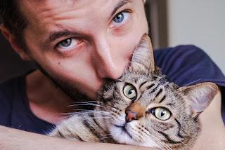 4 Beneficios de tener un gato