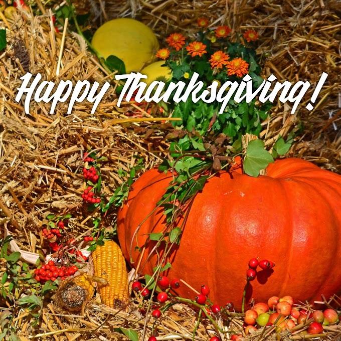 Happy Thanksgiving 2016!