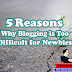 5 Reasons: Why Blogging is Too Difficult for Newbies?