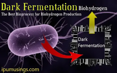 Dark Fermentation - The Best Bioprocess for Biohydrogen Production (#biochemistry)(#biotechnology)(#ipumusings)(#biohydrogen)